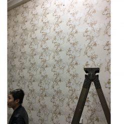 Thi công giấy dán tường Hàn Quốc Salon tóc anh Nam Bùi Xương Trạch